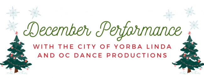 holiday performance banner